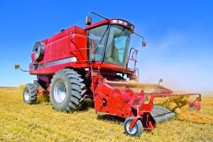 Utilizând soluții informatice de management, fermele agricole își sporesc rentabilitatea