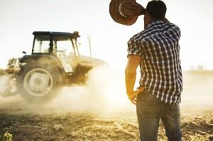 10 avantaje importante pentru societățile agricole