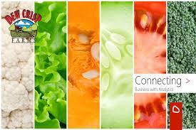 ERP pentru ferme de legumicultură