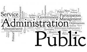 10 aplicatii informatice pentru primarii si consilii judetene