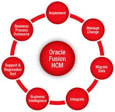 Agricover evaluaza performanțele angajaților cu solutii Oracle