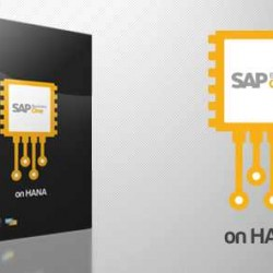 SAP Business One Hana