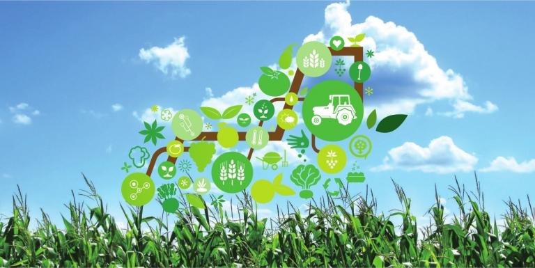 Agricultura şi fenomenul IoT