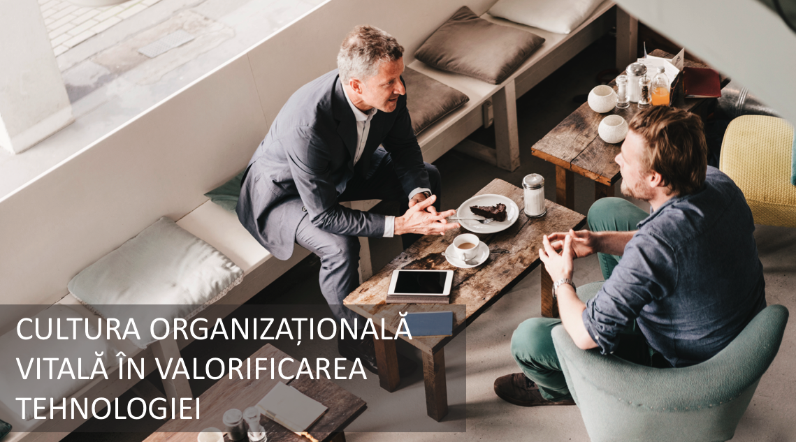 Cultura organizațională crește productivitatea în companii