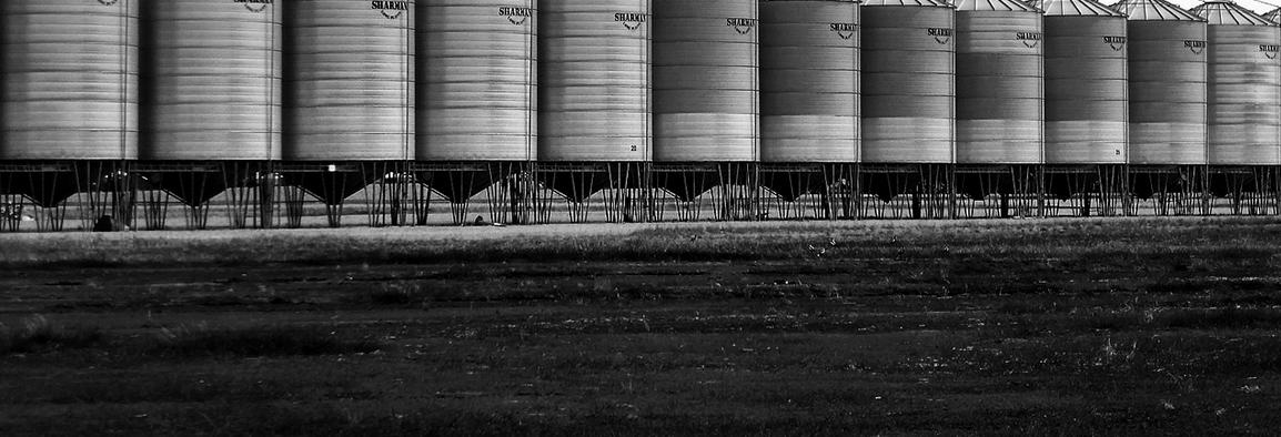 Bento Granar oferă acces la calitatea cerealelor depozitate