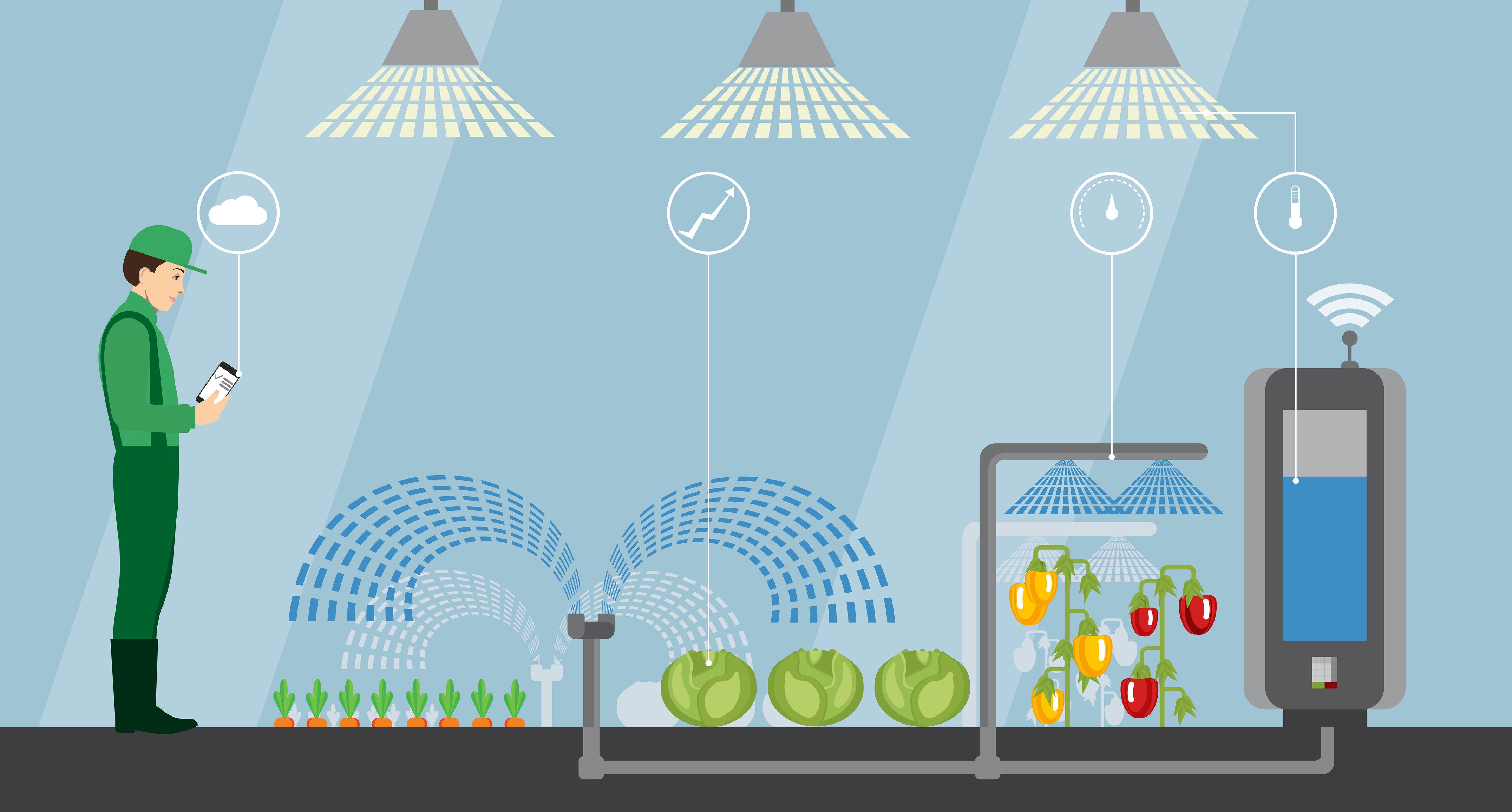 Hackhathon-ul AgriTech identifică noi  soluții care să dezvolte agricultura de precizie din România