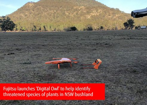 Dronele și inteligența artificială ajută la reducerea dispariției animalelor rare
