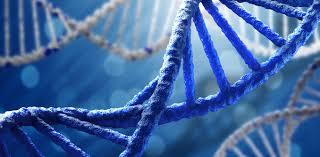 AI a prezis cu succes schimbările din ADN