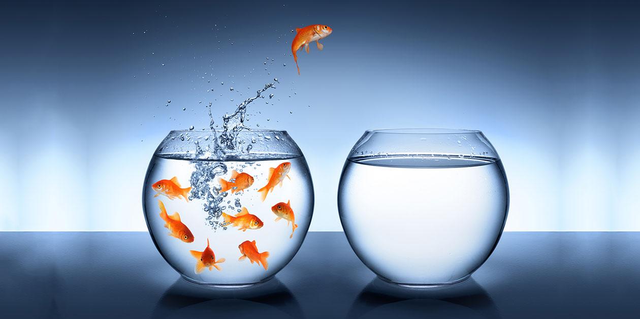 Ce ne pot oferi sistemele ERP în viitorul apropiat?