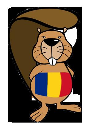 Elevii români participanti la BEBRAS Challenge