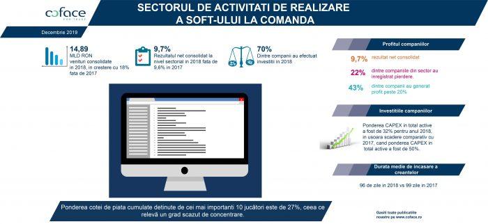 Creștere în sectorul de activități de realizare a soft-ului la comandă