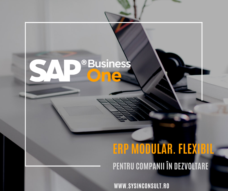 Treci la un nivel superior cu SAP Business One