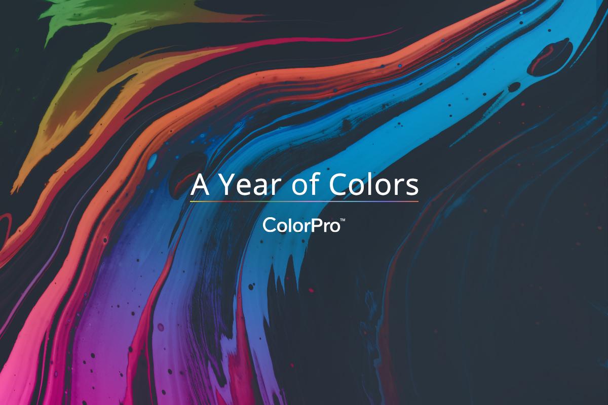 """A început """"Anul culorilor"""" la ViewSonic"""