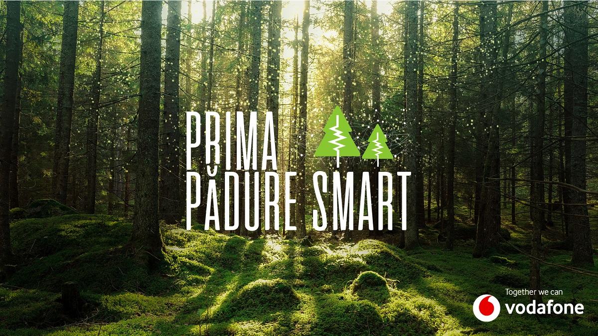 Vodafone pune în funcțiune prima pădure inteligentă din România pentru a preveni defrișările ilegale