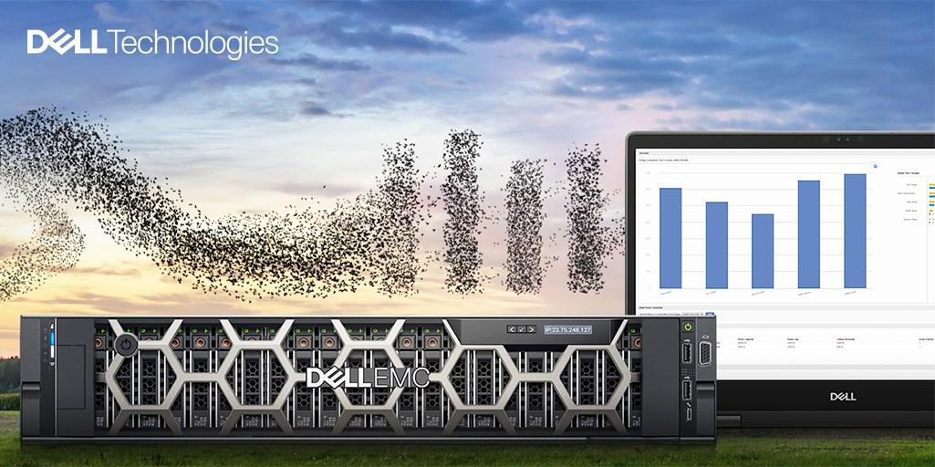 Dell Techologies Romania plantează un copac pentru fiecare participant la evenimentele de Transformare Digitală